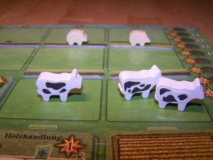 Arler Erde - schwarzbunte Kühe