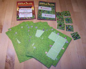 Brains - Japanischer Garten - Inhalt