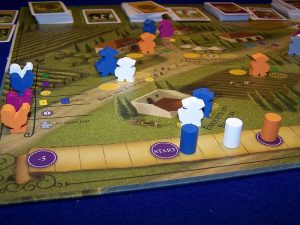 Viticulture - Detail1